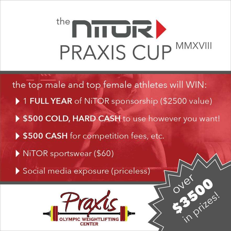nitorpraxiscup